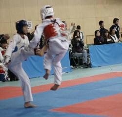 2010 第3回金剛学園テコンドーオープン大会