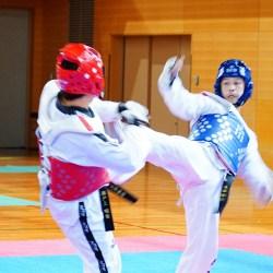 2016 テコンドー 大阪府選手権大会