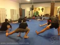 Bilder vom Anfängertraining der Taekwondo Tigers Berlin in der Sportschule Reichenbach in Reinickendorf