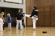 Anbei ein paar Eindrücke von unserem Taekwondo Tigers Kids Team.