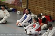 taekwondo-berlin-wedding-reinickendorf-tigers-241