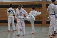 20 Jahre Perfect Taekwondo Berlin mit Aziz Acharki