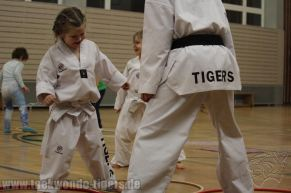 Erstes Training der Taekwondo Tigers Kinder in 2016
