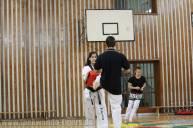 Wettkampftraining der Taekwondo Tigers Berlin Wedding