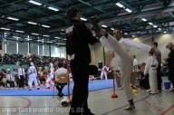 Taekwondo Tigers Berlin auf dem Oberlausitz Cup 2016