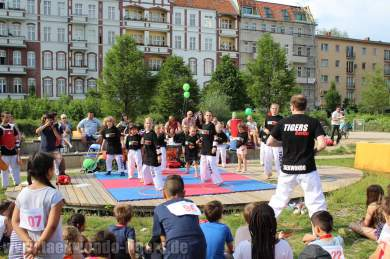 kampfsport-show-wedding-019