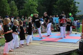 kampfsport-show-wedding-031