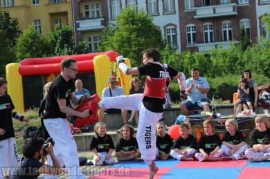 kampfsport-show-wedding-052