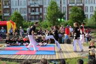 kampfsport-show-wedding-062