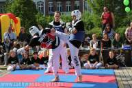 kampfsport-show-wedding-086