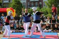 kampfsport-show-wedding-087