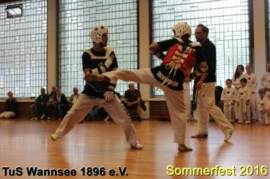 tus-wannsee-sommerfest-2016-233