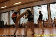tus-wannsee-sommerfest-2016-238