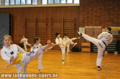 taekwondo-reinickendorf-wedding-berlin-pruefung-18