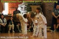 taekwondo-tus-wannsee-sommerfest-reinickendorf-wedding-berlin-29