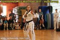 taekwondo-tus-wannsee-sommerfest-reinickendorf-wedding-berlin-31