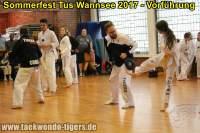 taekwondo-tus-wannsee-sommerfest-reinickendorf-wedding-berlin-33