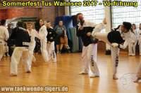 taekwondo-tus-wannsee-sommerfest-reinickendorf-wedding-berlin-35