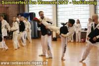 taekwondo-tus-wannsee-sommerfest-reinickendorf-wedding-berlin-37
