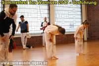 taekwondo-tus-wannsee-sommerfest-reinickendorf-wedding-berlin-46
