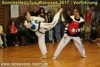 taekwondo-tus-wannsee-sommerfest-reinickendorf-wedding-berlin-47