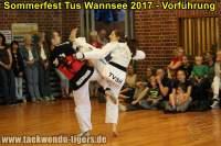 taekwondo-tus-wannsee-sommerfest-reinickendorf-wedding-berlin-48