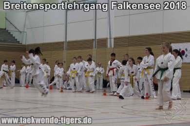 Taekwondo Breitensportlehrgang Falkensee
