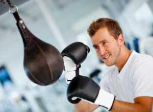 Boxer-Erwachsene