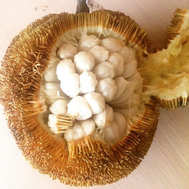 Marang fruit of the Philippines