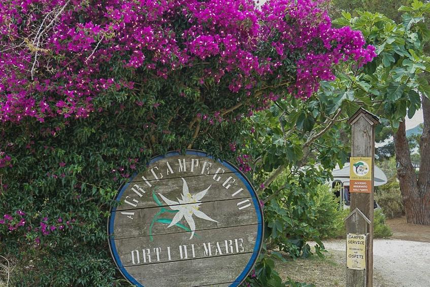 Orti di Mare Elba Campingplatz Reise Reisebericht