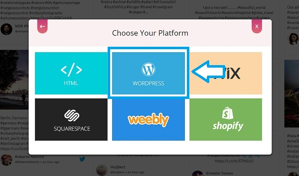 Choose embed platform WordPress