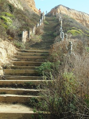 Cowell Ranch steps