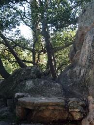 Mortar Rock Park