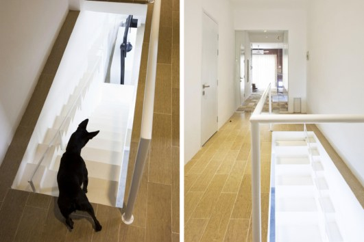 this-vietnamese-home-incorporates-a-second-dog-friendly-staircase-3 (1)