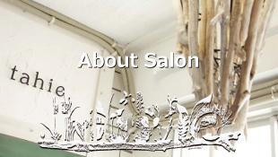 About Salon