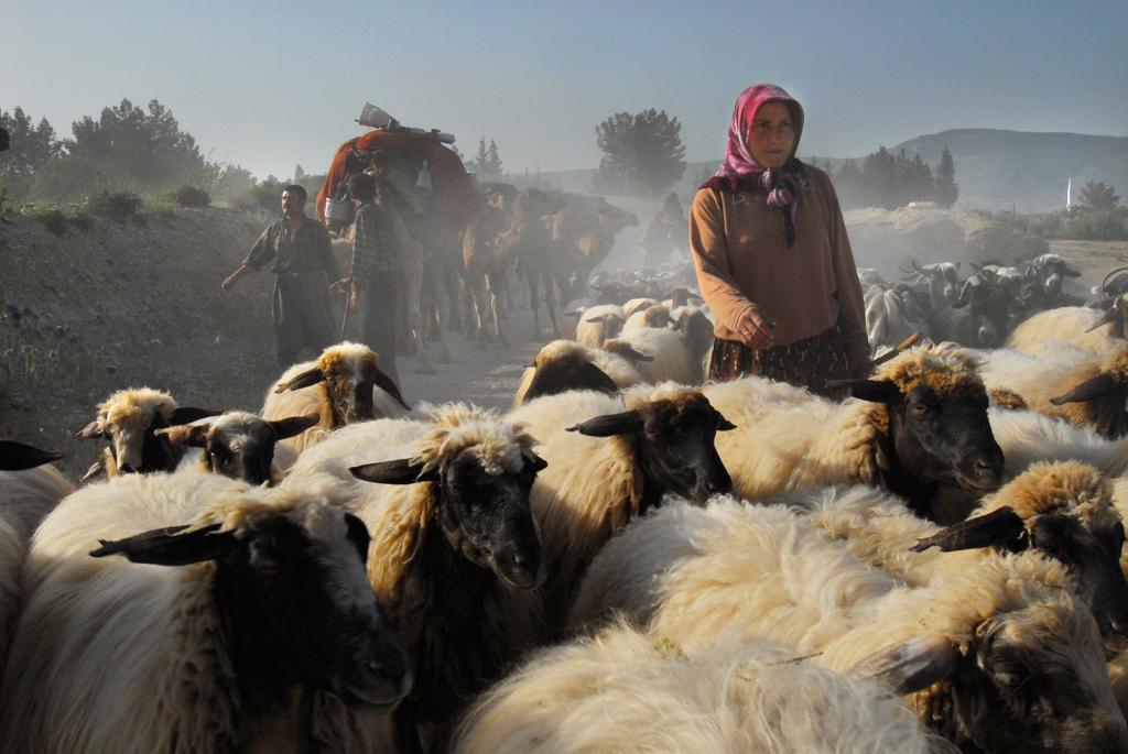 Tahir Özgür The Last Nomads-0112