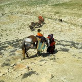 Tahir Özgür The Last Nomads-0115