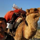 Tahir Özgür The Last Nomads-0120