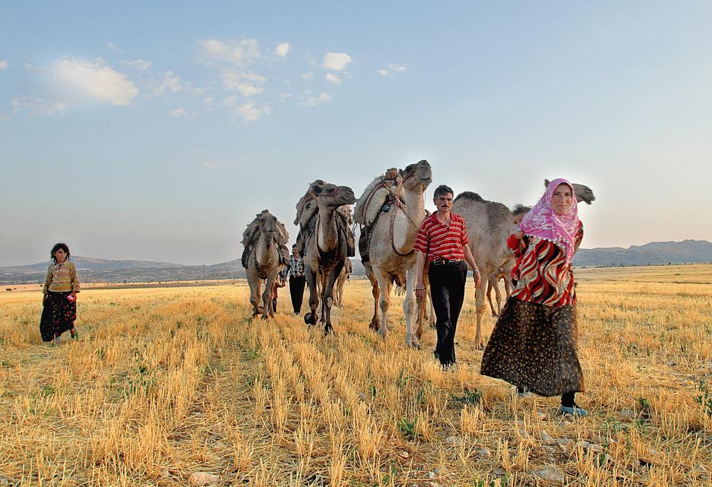 Tahir Özgür The Last Nomads-0126