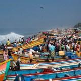 050Tahir Özgür India-Nepal için-52
