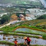 Tahir Özgür Vietnam-Cambodia-131