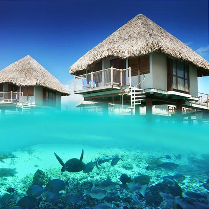 Tahiti Honeymoon Vacations