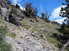 Backside of Relay Peak