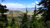 Beautiful View of the Carson Valley