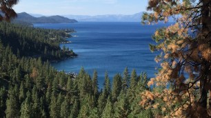 View of east shore, Skunk Harbor, Deadman's Point
