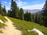 Tahoe Meadow to Spooner Trail on the TRT