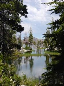 12-Marsh in Desolation Wilderness