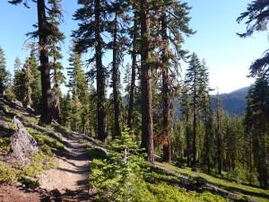 28-Tahoe Rim Trail