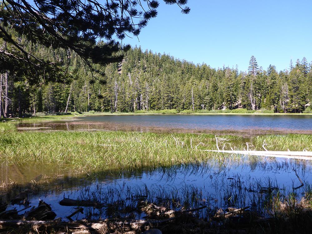 31-Watson Lake