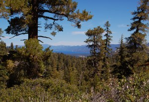 80-View of Lake Tahoe just South of Echo Summit